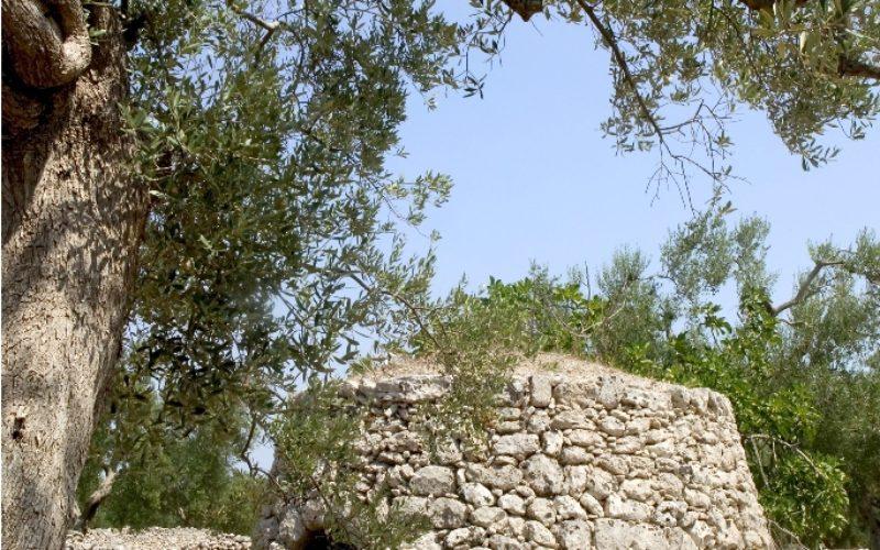 Pjaru_traditional stone
