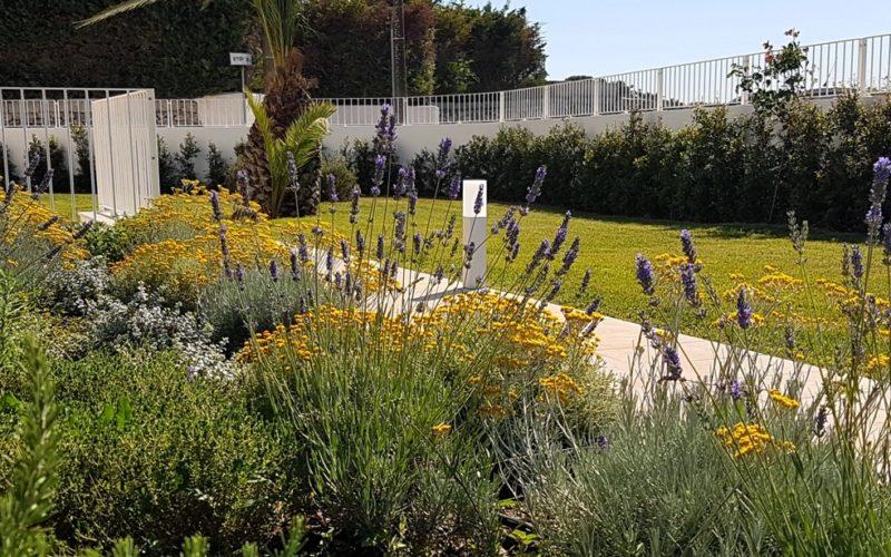 outdoor_green_area_vegetation
